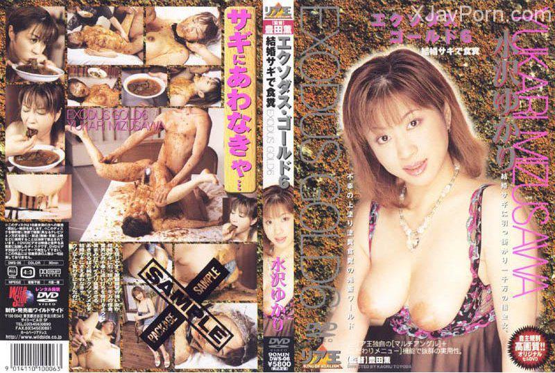 [DWS-06] エクソダスゴールド6水沢ゆかり 素人 モデル・お姉さん風 2002/05/17 リア王