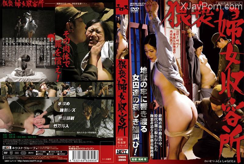 [VNDS-2895] 昭和性犯罪シリーズ 猥褻婦女収容所 輪姦・凌辱 監禁・拘束