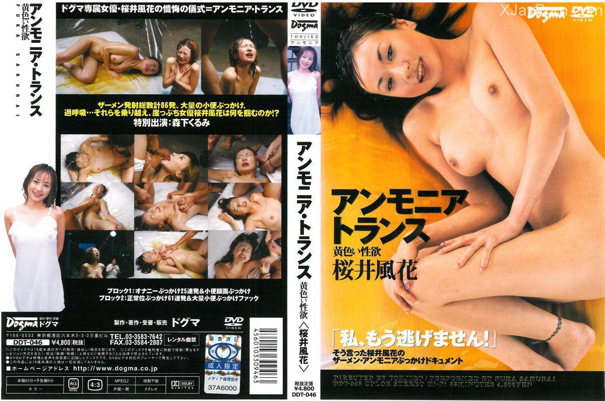[DDT-046] アンモニアトランス 桜井風花 飲尿 Golden Showers 放尿