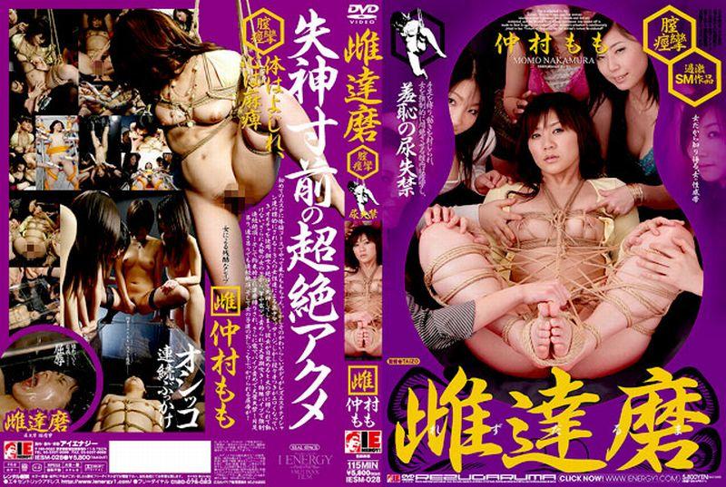[IESM-028] 雌(レズ)達磨 膣痙攣 尿失禁 2007/06/07 レズエステ Rape アイエナジー