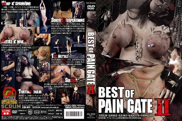 [DDSC-020] BEST OF PAIN GATE 2 SM 120分
