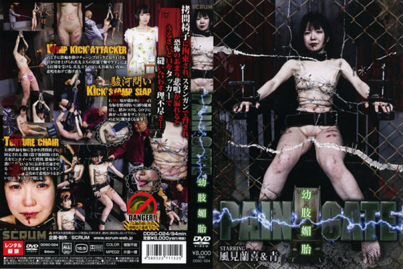 [DDSC-024] PAIN GATE 幼肢媚目 踏みつけ(M男) スパンキング・鞭打ち SM 縛り Widow