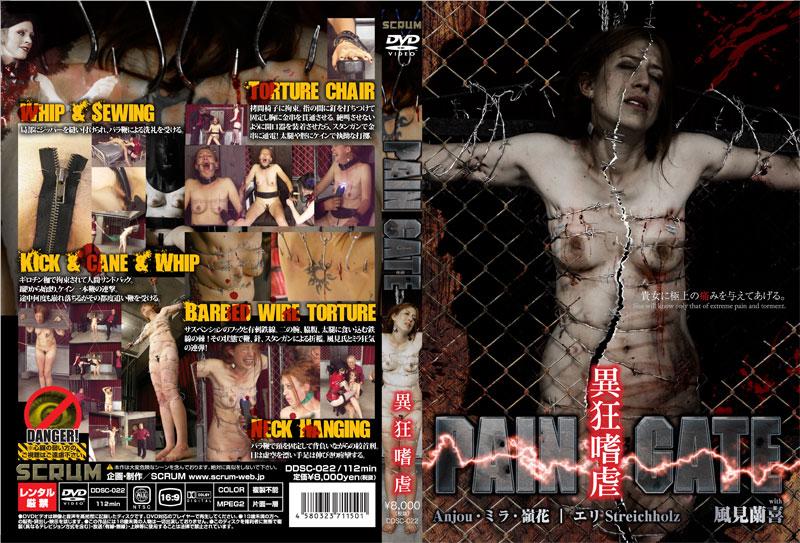 [DDSC-022] PAIN GATE 異狂嗜虐 SM 風見蘭喜 拘束グロ