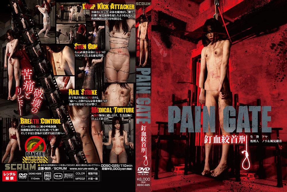 [DDSC-025] PAIN GATE 釘血絞首刑 風見蘭喜 SM スパンキング・鞭打ち