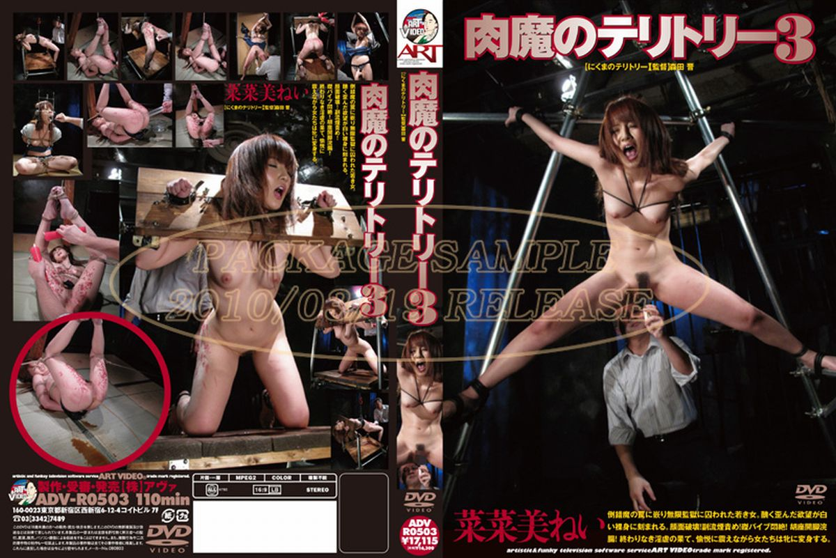 [ADV-R0503] 肉魔のテリトリー 3 森田晋 アート(アヴァ) Torture 凌辱