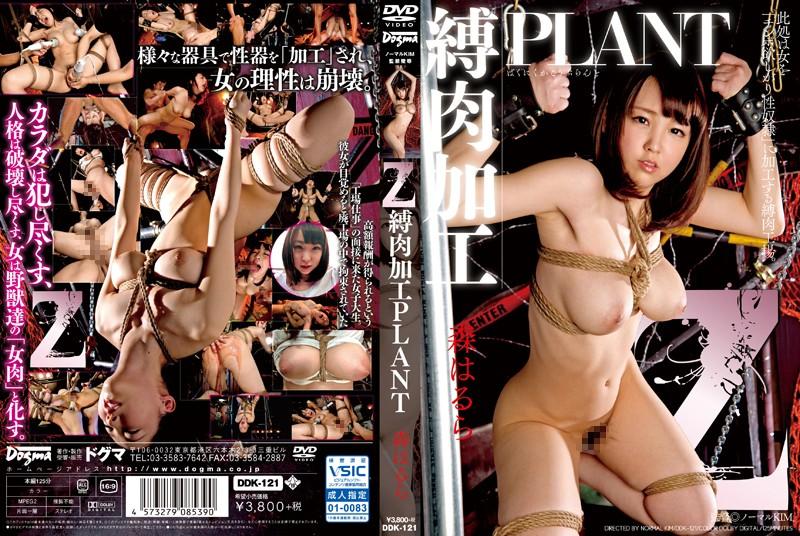 [DDK-121] Z 縛肉加工PLANT 森はるら Amateur Big Tits 2016/06/19 監禁 Captivity オナニー 面接・オーディション
