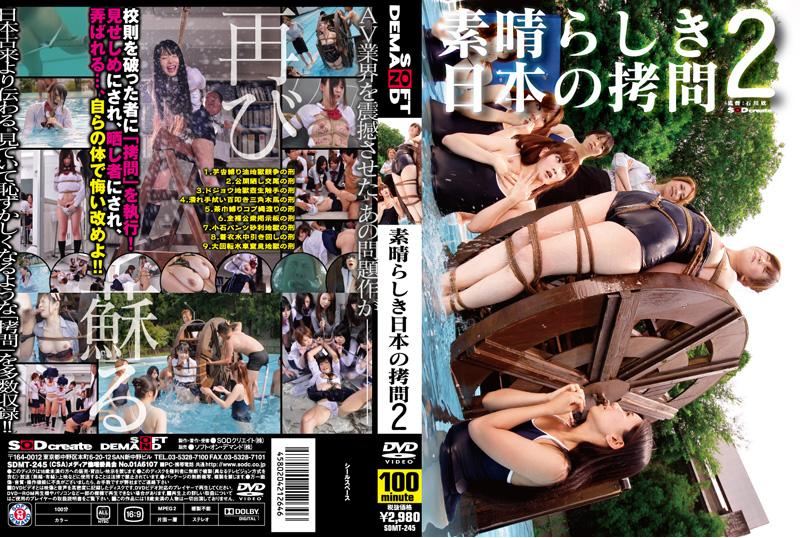 [SDMT-245] 素晴らしき日本の拷問 2 企画 100分 2011/01/25