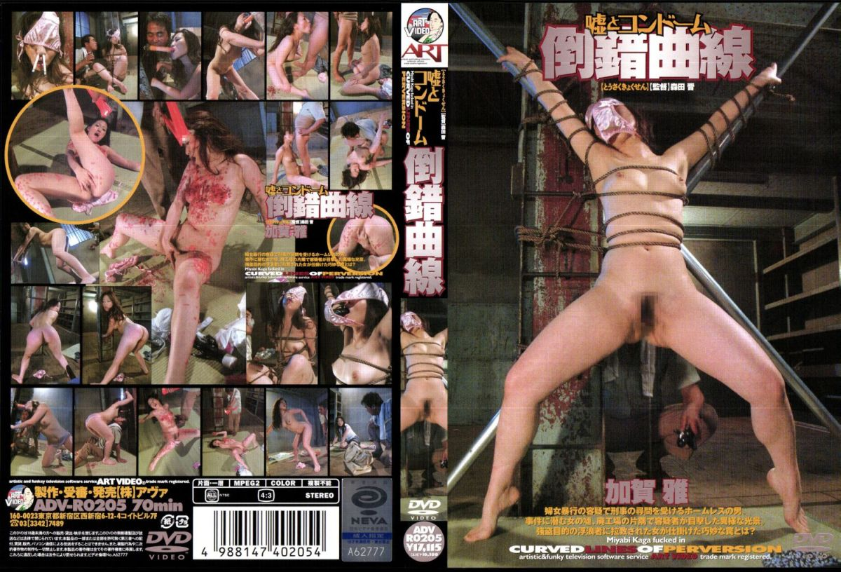 [ADV-R0205] 倒錯曲線 森田晋 アートビデオ 2006/08/12