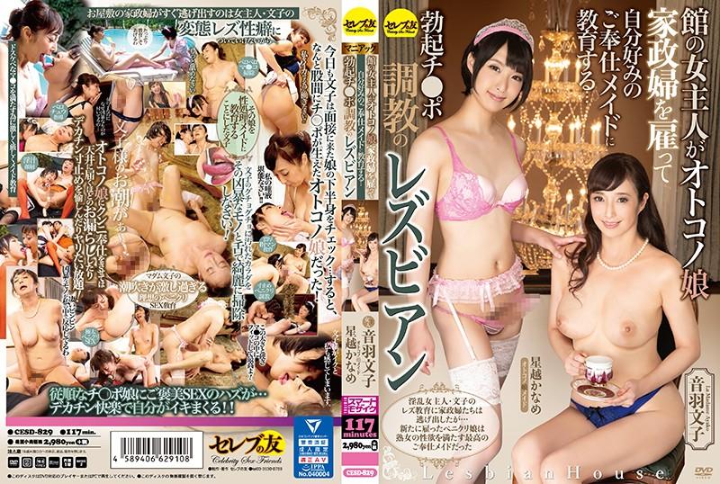 [CESD-829] Hoshikoshi Kaname 館の女主人がオトコノ娘家政婦を雇って自分好みのご奉仕メイドに教育する ... Transvestite 接吻 巨乳 Torture