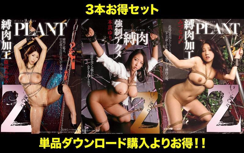 [STDDT-076] 【お得セット】Ayumi Shinoda まとめて抜ける!! Z 縛肉 シリーズ Mizuna Rei Torture